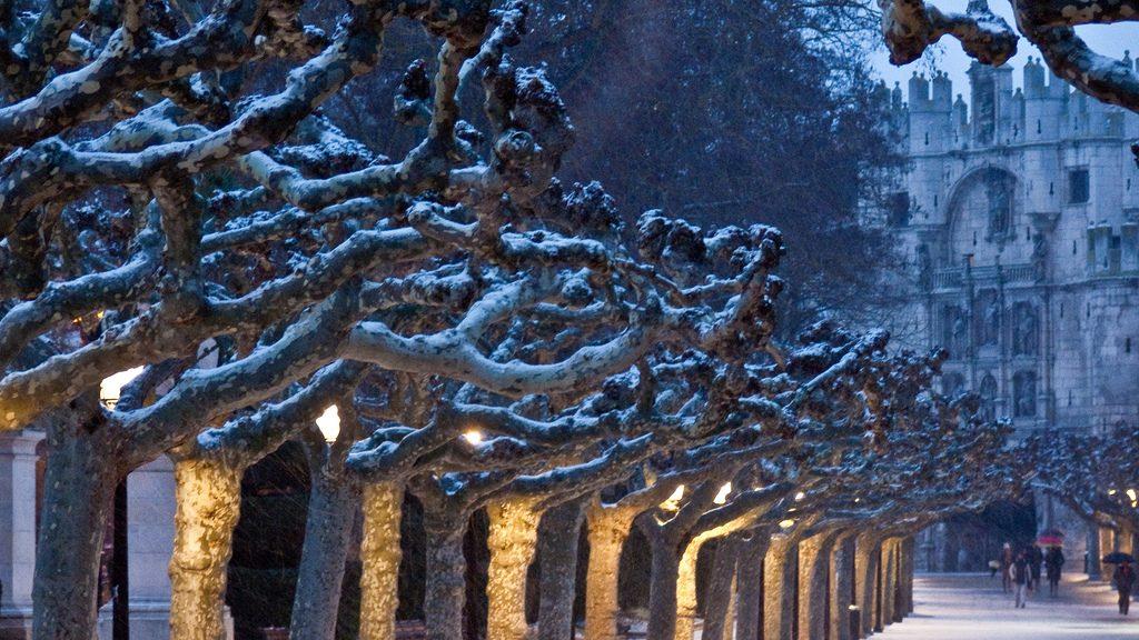 Arco de Santamaría, monumentos imprescindibles de Burgos